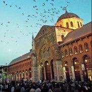 Святая земля Сирии | МОО «Союз православных женщин»